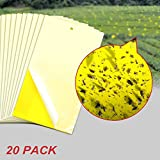 Highley Sticky Fly Trap,Dual Side Yellow Sticky Traps Non-toxic 6*10 inch Fly Sticker for Plant Insect Like Fungus Gnat,Whitefly,Aphid,Leaf Miner,Other Flying Insectsd,Bugs(20 Pack)