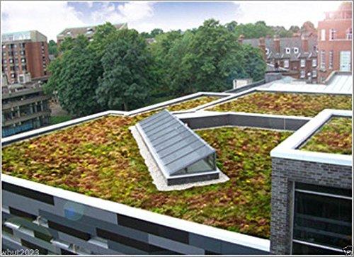 Sedum Green Roof - Sedum Seeds-Roof Garden- Beautiful Mix Colors - Greens,Yellows,Reds And Purple !