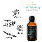 Stellar Naturals Breathe Easy Essential Oil Blend, Pure Therapeutic Grade, 1 fl. oz