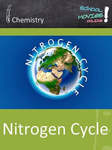 Nitrogen Cycle - School Movie on Chemistry ()