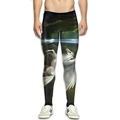 b52d7ede5f Image Unavailable. Image not available for. Color: Men's Compression Pants  Pegasus ...