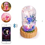 Aolvo Fairy Tail Lights Bluetooth Speakers with