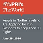 People in Northern Ireland Are Applying for Irish Passports to Keep Their EU Rights | Joshua Kelly