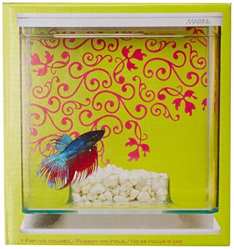 Amazon.com : Marina Betta Pals Kit, Girl Theme : Aquarium Starter Kits : Pet Supplies