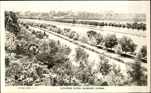 Alexandra Avenue Melbourne, Australia Original Vintage - The Avenue Melbourne