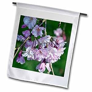 WhiteOak Photography Floral Prints - Cherry Blossom Flowers - 12 x 18 inch Garden Flag (fl_45342_1)
