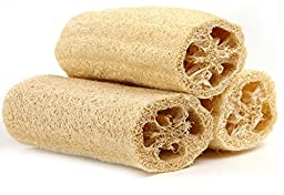 Natural Loofah Exfoliating Bath Sponge by Spa Destinations™ (3 PACK of 4\