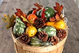 Faux Autumn Gourds, Polysilk Leaves and Natural Pinecones - Fall Decorating Kit