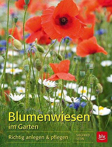 Blumenwiesen im Garten: Richtig anlegen & pflegen