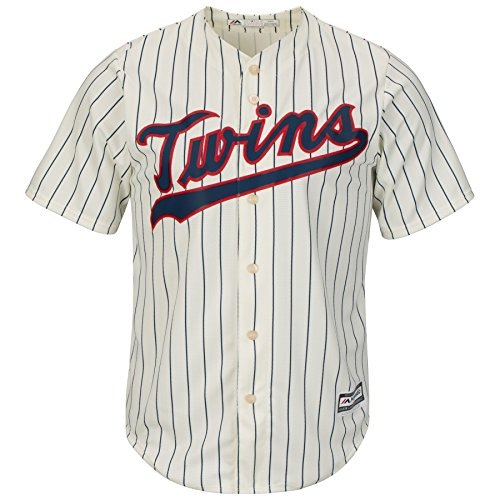 Minnesota Twins Youth Cool Base Alternate Team Pinstripe Jersey (Youth Large 14/16)