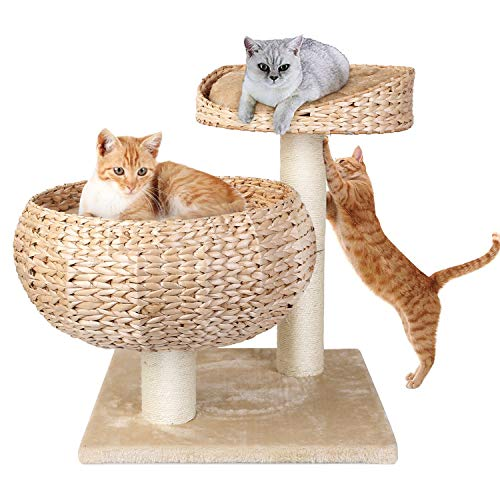 Pedy Cat Scathing Trees, Sisal Cat Trees and Towers with Cat Hammock, Activity Tree with Scratching Post, Cat Tree House with 2 Floors Great for Little Cat