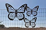 Rustic Butterfly Set -- 1 Giant and 2 Medium