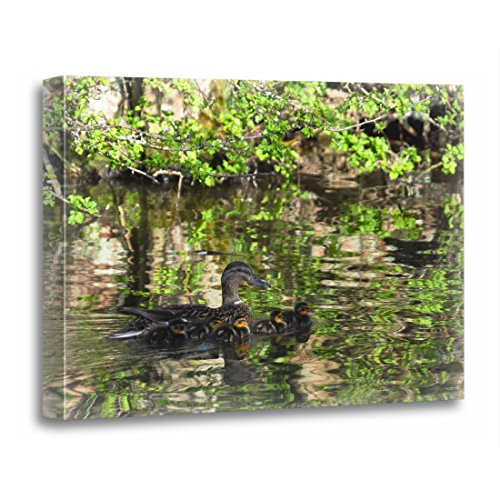 TORASS Canvas Wall Art Print Photos Mallard Duck and Photography Duckling Pictures Cute Artwork for Home Decor 12