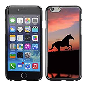 LECELL -- Funda protectora / Cubierta / Piel For Apple iPhone 6 Plus 5.5 -- cute animals horse --