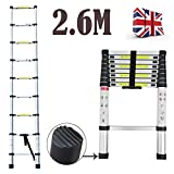 2018 Latest Design DIY Multi-Purpose Aluminium Telescopic Ladder Extension Extend - Portable Foldable (2.6M)