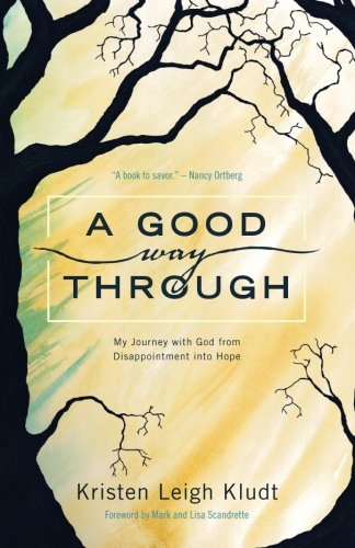 A Good Way Through: My Journey with God from Disappointment into Hope (Starting A Group Home For Foster Children)