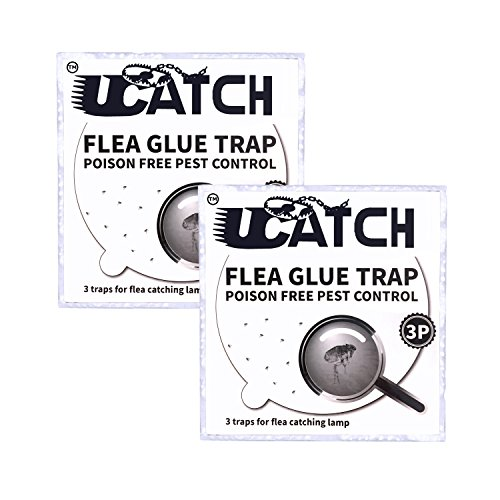 The Ultimate Flea Trap Refills – Disposable Flea Glue Refill Discs for Victor M230A Traps 2 pack of 3 (6 ()