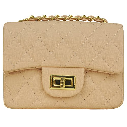 Quilted Crossbody Bag Girls Side Purse and Shoulder Handbags Designer Clutch with Chain ()