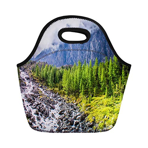 Semtomn Lunch Tote Bag Green Clouds Mountain River Stream Landscape Edge Flower Fog Reusable Neoprene Insulated Thermal Outdoor Picnic Lunchbox for Men Women