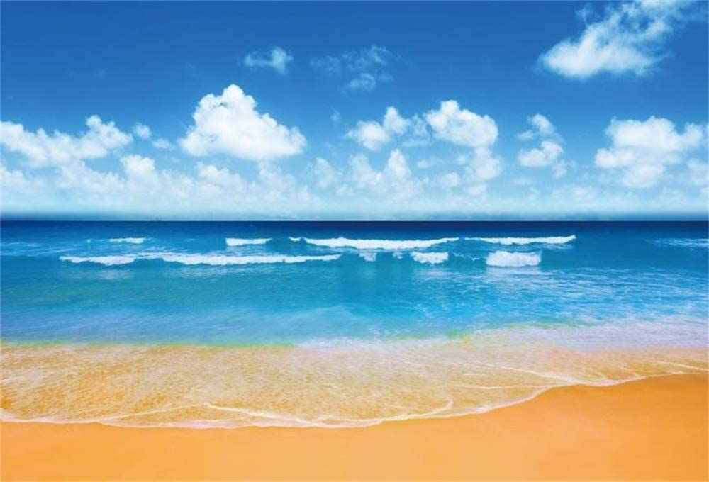 10x8ft Summer Tropical Beach Backdrop for Photography Ocean Sea Horizon Background Blue Sky White Cloud Landscape Summer Holiday Vacation Children Adult Photo Booth Shoot Vinyl Studio Props
