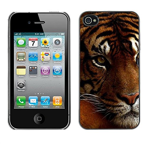 GooooStore/Housse Etui Cas Coque - Tired Sleepy Big Cat Orange Fur Tiger - Apple iPhone 4 / 4S
