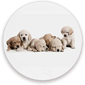 ZHIMI Coasters for Drinks Adorable And Curious Golden Retriever Puppies Round Absorbent Coasters Set Ceramic Stones Cork Base Suitable for All Kinds of Mugs and Cups