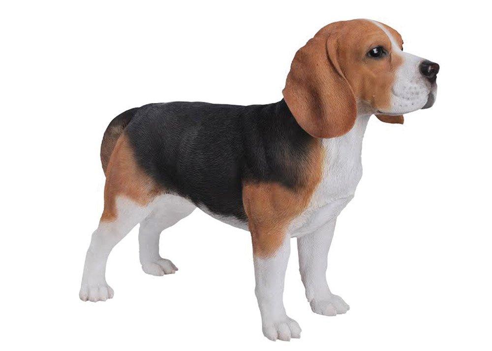 Hi-Line Gift Ltd Beagle Dog Statue by Hi-Line Gift Ltd.