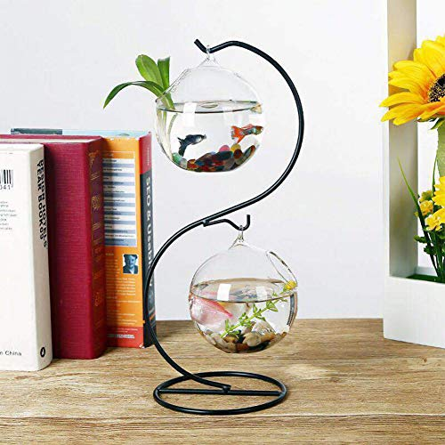pe Glass Vase, Hanging Terrarium for Air Succulent Plants + Iron Frame, Round Single Hole Fish Tank (S Type) (Micro Single Suspension)
