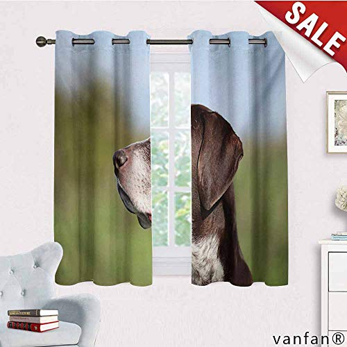 Big datastore Darkening Draperies Curtains/Drapes Panels,Hunting,German Short Haired Pointer in Wilderness Portrait Photograph Kurzhaar Pet Dog,for Bedroom 2 Panels,Multicolor,W55 Xl39