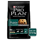 Pro Plan Puppy Razas Medianas con OptiStart, Sabor Pollo, 17.5 kg, 1 Piece