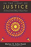 img - for In the Light of Justice: The Rise of Human Rights in Native America and the UN Declaration on the Rights of Indigenous Peoples by Walter R. Echo-Hawk (2013-07-01) book / textbook / text book