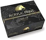 Acrylic Paint Set - 12 x 300ml Bottles - Heavy Body