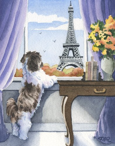(Shih Tzu in Paris Art Print by Artist DJ Rogers)