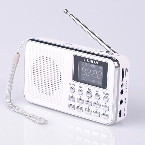 Mfine Portable Mini USB AM/FM Radio Speaker Music Player Micro SD/TF Card For PC iPod Phone (938B ()
