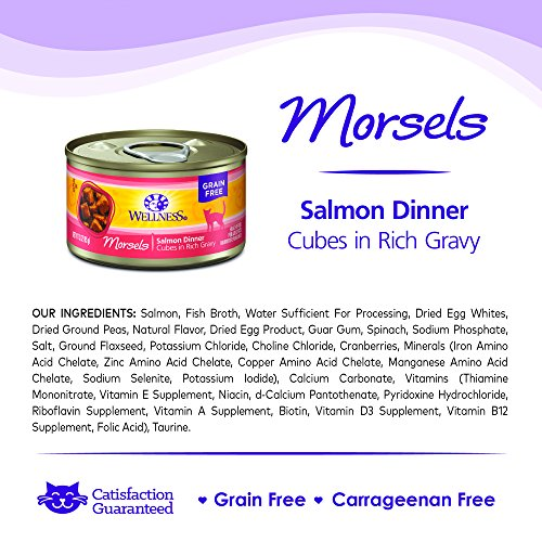 076344026655 - Wellness Natural Grain Free Wet Canned Cat Food, Morsels Salmon Dinner, 3-Ounce Can (Pack of 24) carousel main 6