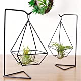 2Pcs Air Plant Holder with Stand Himmeli Hellow Freestanding Hanging Planter Vase Flower Pots for Succulent Plants, Air Plant, Mini Cactus, Faux Plants