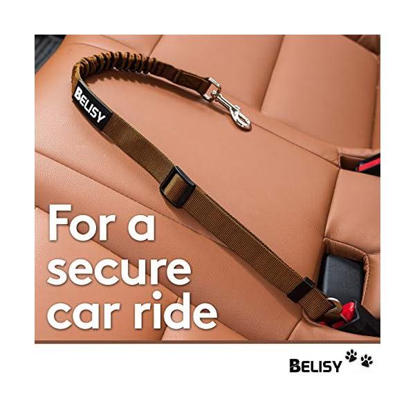 51kfnMDP51L BELISY Hunde Sicherheitsgurt fürs Auto I maximale Sicherheit & Komfort I Blau