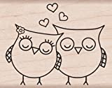 "Hero Arts Mounted Rubber Stamps 1.5""X2""-Heart Owls Mounted Stamp"