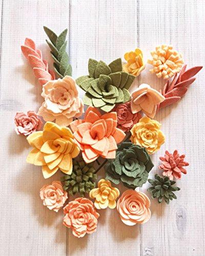 Wool Felt Succulents and Felt Flowers - Spring - Blush Pink - Coral - Create Headbands, DIY Wreaths, Garland, Vertical Garden, Baby Shower, Wedding ()