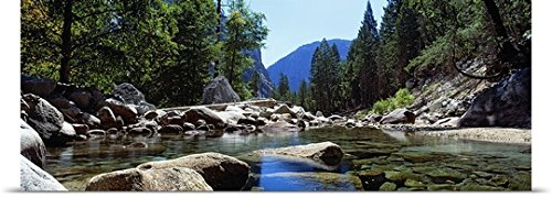 GREATBIGCANVAS Entitled Mountain Behind Pine Trees, Tenaya Creek, Yosemite National Park, California Poster Print, 72