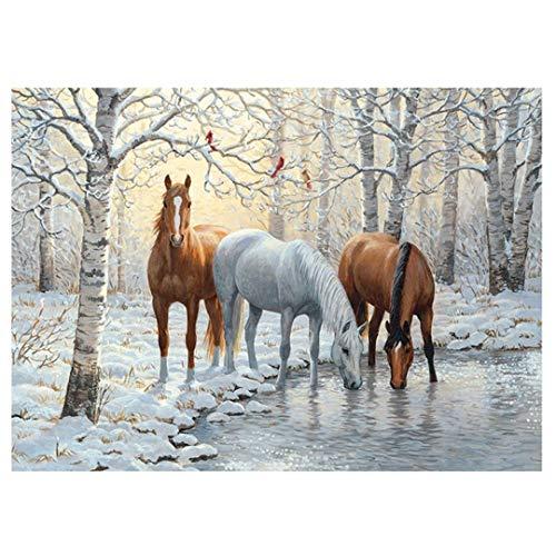 HaoHuaman DIY 5D Resin Diamond Painting Animals Picture of Rhinestones Christmas Decoration Diamond Embroidery Horse Pattern Round Drill 40x60cm