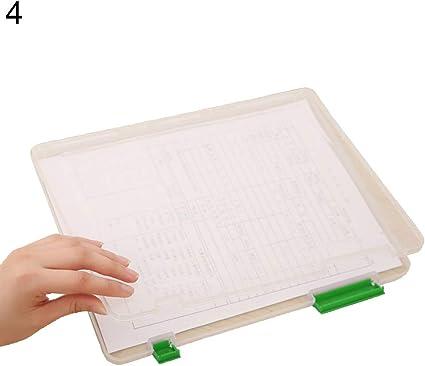 uyhghjhb - Caja de almacenaje para documentos (tamaño A4), transparente verde: Amazon.es: Oficina y papelería