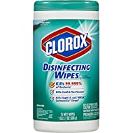 Clorox Disinfecting Wipes, Fresh Scent, 75 Count