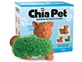 Chia Pet Playful Puppy, Decorative Pottery Planter, Easy To Do and Fun To Grow, Novelty Gift, Perfect For Any Occasion (Contains Packets For 3 Plantings)