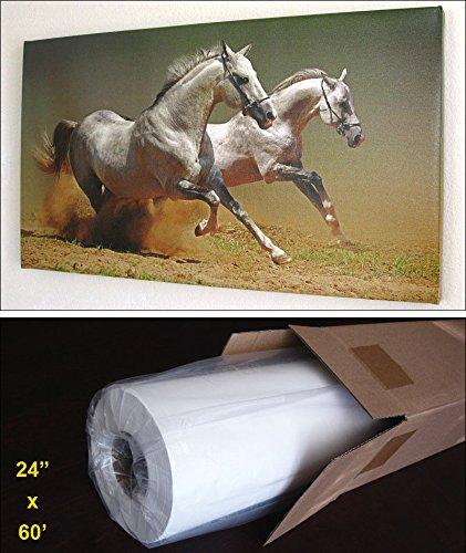Giclee Matte Art (Inkjet Art Canvas, Matte 24