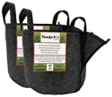 Thunder Pot Zippered Fabric Grow Bag 2-Pack Cloth Air Pots for Indoor, Outdoor & Hydroponic Use   Soil Planters for Flowers, Potato, Tomato, and Other Vegetables & Garden Plants (5-Gallon)