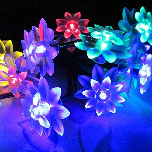 Besde Solar LED Solar String Lights 20 LED Lotus Flower Light Decorative Outdoor Indoor Decoration (Garland 5 Light Bath)