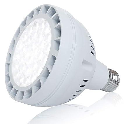 Amazon com : 50W LED Pool Light Bulb, 5000LM 120V 6000K