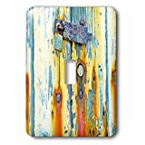 3dRose Abstract Wood Colors - Image of Aged Blue and Orange Wood With Lock - Light Switch Covers - single toggle switch (lsp_264394_1)