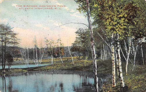 (Atlantic Highlands New Jersey Hosford's Pond The Birches Postcard JD933276 )